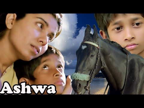 Ashwa | Bollywood Full Movie | Movies for Kids | Children's Hindi Movie | Animals Short Movies