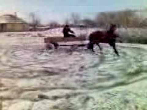 Xxx Mp4 Horse Drift 3gp 3gp Sex