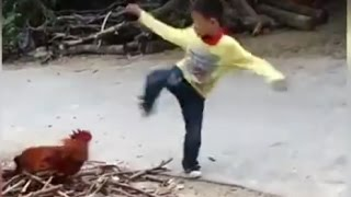【Funny Kung Fu】 Kid vs. Master Rooster ! Awesome & funny fight