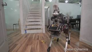 Robot Dog Doesn't Like Bananas
