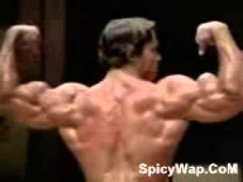 Arnold bugil wow