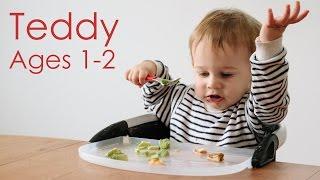 Teddy Ages 1 - 2 | Bon Appétempt | PBS Digital Studios