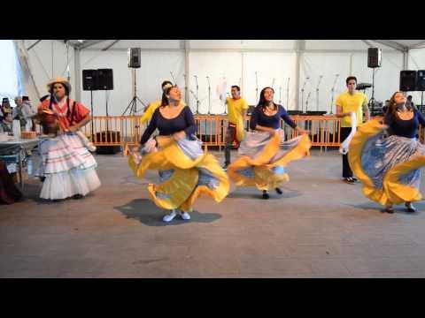 TEROR MULTICULTURAL Baile de la burra SENTIR VENEZOLANO