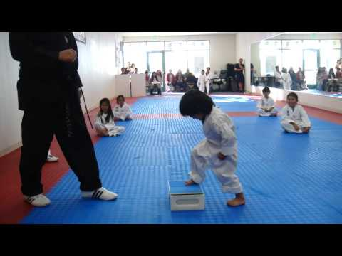 Xxx Mp4 3 Year Old Tries To Break Board In Taekwondo Taekwondo Kid 3gp Sex