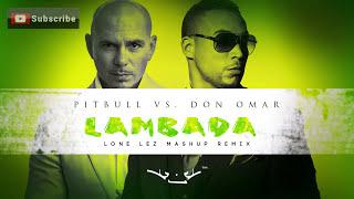 Pitbull Vs. Don Omar - Lambada (Lone Lez Mashup Remix)