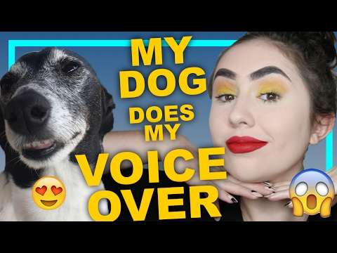 MY DOG DOES MY VOICE OVER | CAITO POTATOE