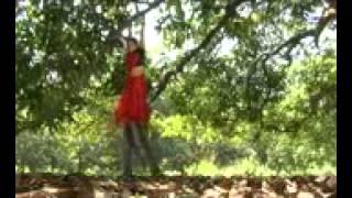 Adivasi Mundari video song aam ge tain.3gp