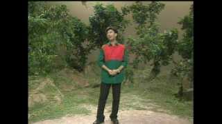 Mamun. Amar Ruposhi Bangla