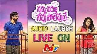 Nannu Vadili Neevu Polevule Movie Audio Launch || Live || Balakrishna Kola, Wamiqa Gabbi