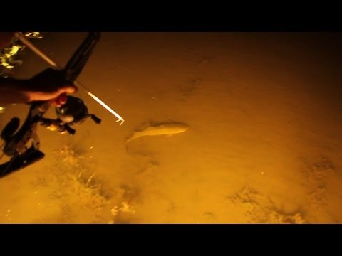 Bowfishing Swamp Style