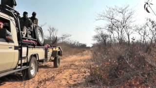 MJK & Mbalabala Safaris 2016 Promotional Video