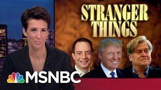 Top Donald Trump Aid Stephen Bannon: Right-Wing Media Mogul | Rachel Maddow | MSNBC