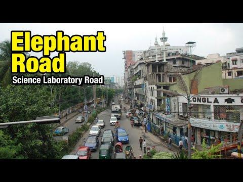 Xxx Mp4 Elephant Road Markets 3gp Sex