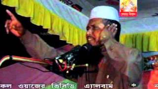 jaberer barite nobiji by maulana tofozzul hussain