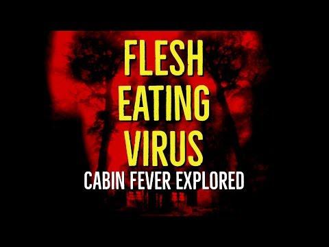 Xxx Mp4 Flesh Eating Virus Cabin Fever Explored 3gp Sex