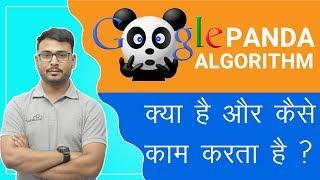 Google Panda 2019   Rules Of Google Algorithm   Ultimate Guide Of The Panda Update  