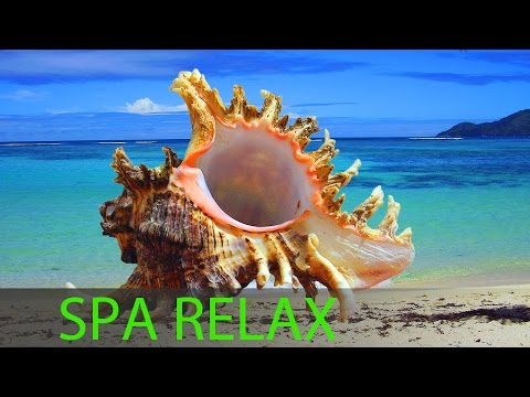 6 Hour Best Relaxing Spa Music Background Music Soothing Music Massage Music ☯357