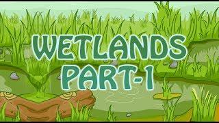 Lands    Wetlands   Water Lands   2D Animated   Part 1