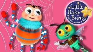 Itsy Bitsy Spider | Part 3 | Nursery Rhymes | Original Version By LittleBabyBum!