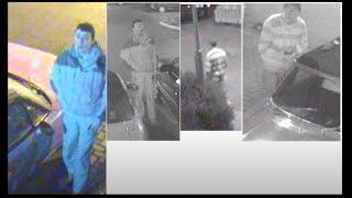 Ongar dumbass/scumbag car thief
