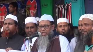 প্রফেসর ড. মুহাম্মাদ আসাদুল্লাহ আল-গালিব,  রোহিঙ্গা গনহত্যার প্রতিবাদে মানববন্ধন ও প্রতিবাদ সভা