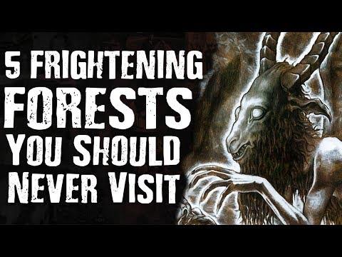 5 FRIGHTENING FORESTS You Should Never Visit