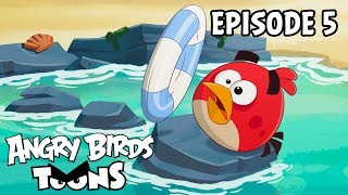 Angry Birds Toons | Sink or Swim - S2 Ep5