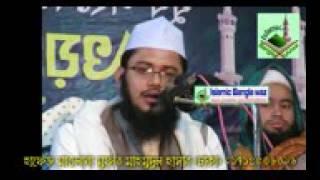 বাতিলের বিরুদ্ধে যে কথা কেউ বলেনি Mufti Mahmudul Hasan Bangla waz 2017