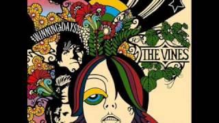 Ride -The vines (lyrics)