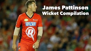 James Pattinson // Wicket Compilation