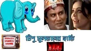 Tipu Sultaner Hati(টিপু সুলতানের হাতি) | Bangla Natok(Super Comedy) ft. Zahid Hasan