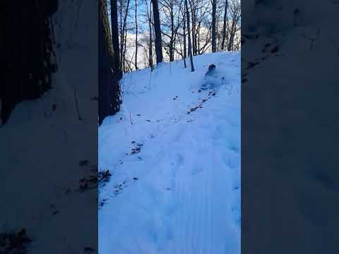 Xxx Mp4 Two Girls Sledding And Fuck Up 3gp Sex