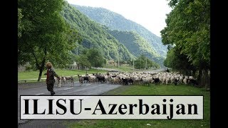 Azerbaijan/Ilisu (Shepherds,sheep and dogs)  Part 30