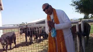 Maha Mantra Chanting at Goshala  7-15-2017