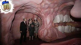15 Strangest Museums Ever