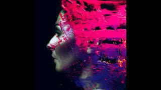 Steven Wilson- Hand Cannot Erase