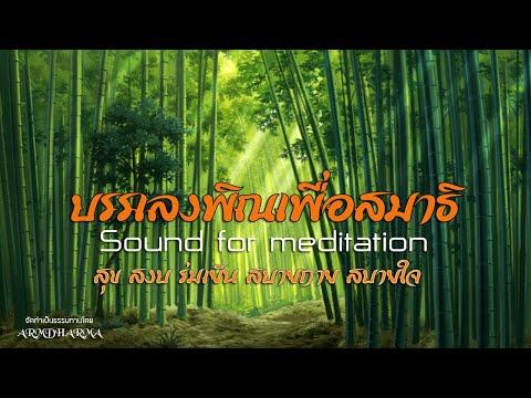 บรรเลงพิณเพื่อสมาธิ Sound for meditation
