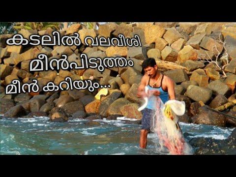 Xxx Mp4 Amazing Sea Cast Net Fishing And Cooking Mullet Fishing And Cooking Kerala Omkv Fishing 3gp Sex