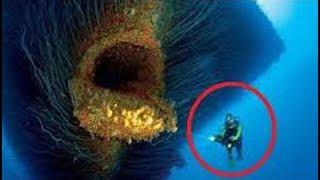 Top 10 Misterios De Las Profundidades Marinas - FULL TOPS