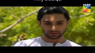 Asfand+Zubia VM/ Tera gham mera gham ek jaisa sanam