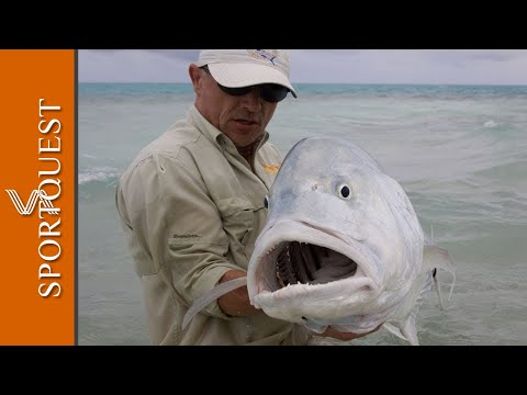 Fly Fishing For GT s On Christmas Island Mind Blowing Action