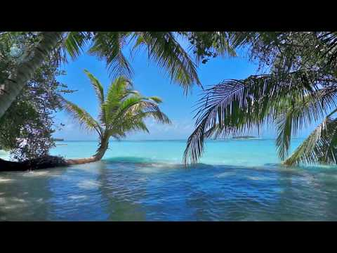 Xxx Mp4 🎧 Ocean Waves On Tropical Island Maldives Ambience Sound Paradise Beach Sounds For Relaxation 3gp Sex