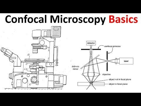 Confocal microscopy Basics