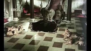 Nafrat ki duniya ko (Video Song) | Haathi Mere Saathi | Rajesh Khanna & Tanuja