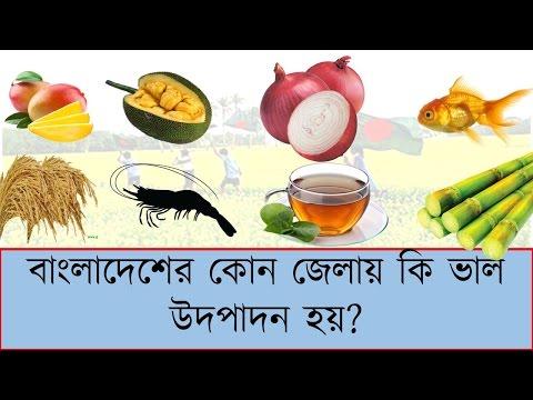 কোন জেলায় কি ভাল পাওয়া যায়? Crop Statistics in Bangladesh । top crops production district in  BD