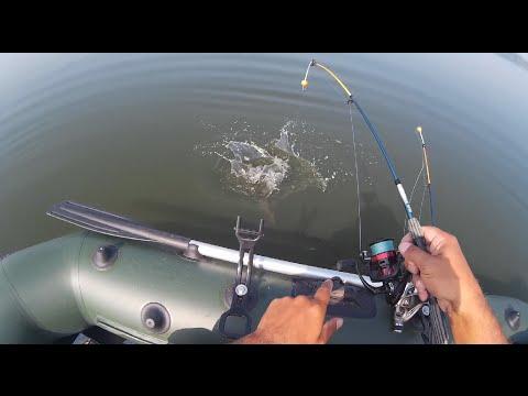 рыбалка с лодки с кормушкой в проводку
