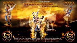 PASOS DE FUEGO - TEMA - LA HERMANDAD DE FUEGO - 2014 - PRIMICIA