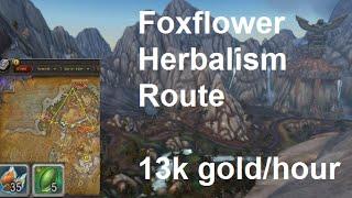 WoW Legion: 13,000g an hour w/ Herbalism | Foxflower Herbalism Route Farming