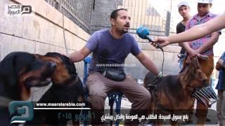 مصر العربية |  بائع بسوق السيدة: الكلاب هي الموضة والكل بيشتري