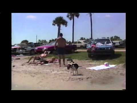 Xxx Mp4 Beagle Is Trained To Take Off Girl 39 S Bikini Tops 3gp Sex